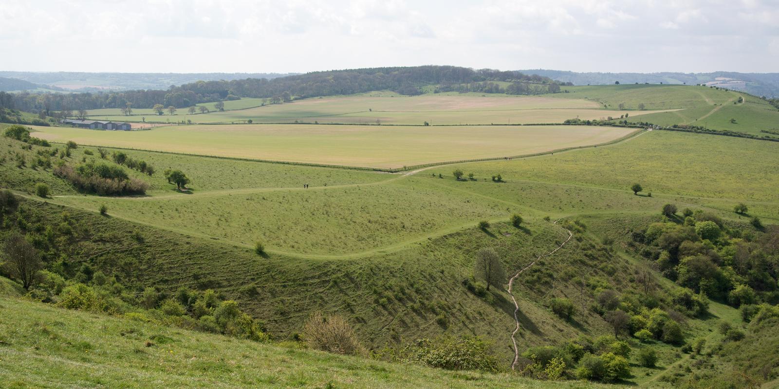 The Ridgeway Tring Circular