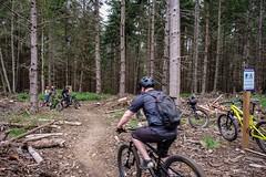 Dockton Forest Mountainbike Park