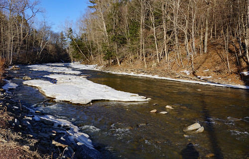 creek tenmilecreek greenecounty oakhillny nature landscape
