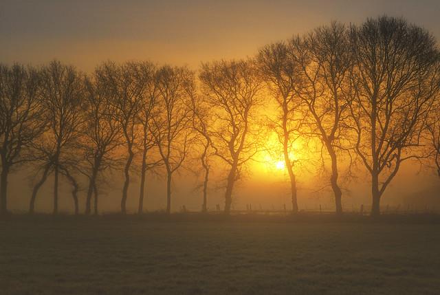 Foggy sunrise [explored]