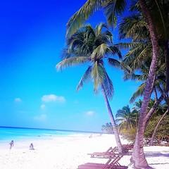 Saona #Dominican Republic