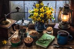 Spring Comforts by memoryweaver