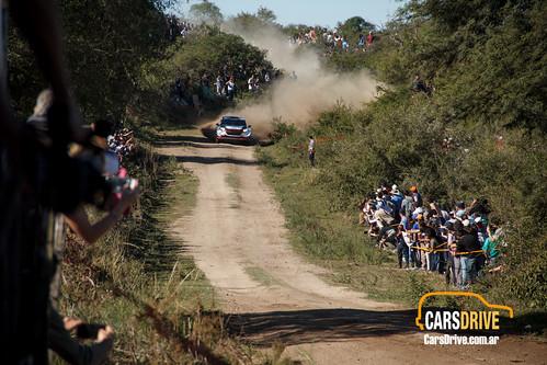 WRC Elfyn Evans