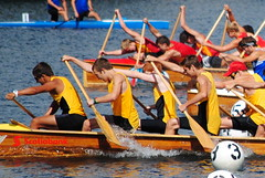 vehicle, sports, rowing, recreation, canoe sprint, boating, water sport, watercraft, canoeing, boat, paddle,