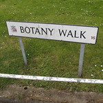 Botany Walk, Ladywood - road sign