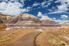 Petrified Forest and Painted Desert National Park (Arizona)