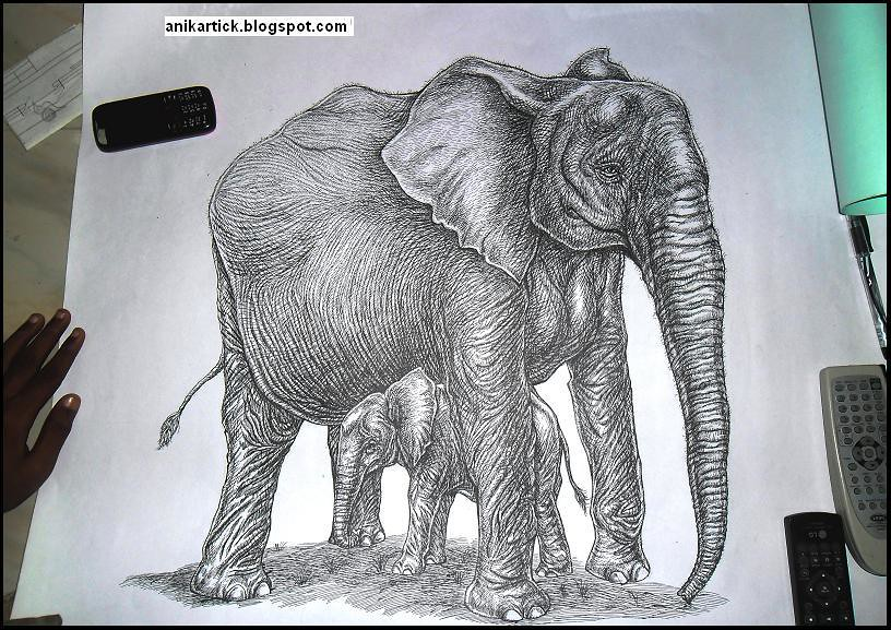 Line Drawings Of African Animals : Chennaiartistworks's most recent flickr photos picssr