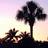 T. Allan Smith - @Pixel Beach, Florida - Flickr