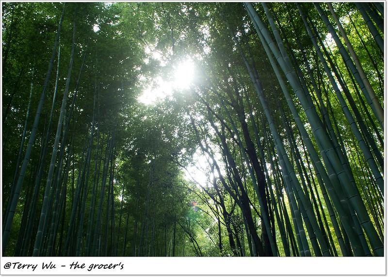 2013-09 嵐山 2-2