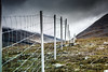 mountain fence by Sascha Kilmer