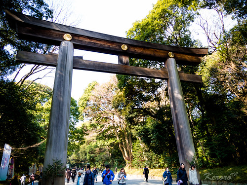 2014-02-01 日本行第八天 明治神宮