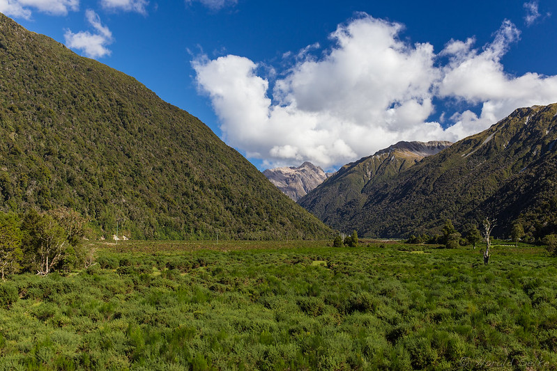Between Otira and the West Coast