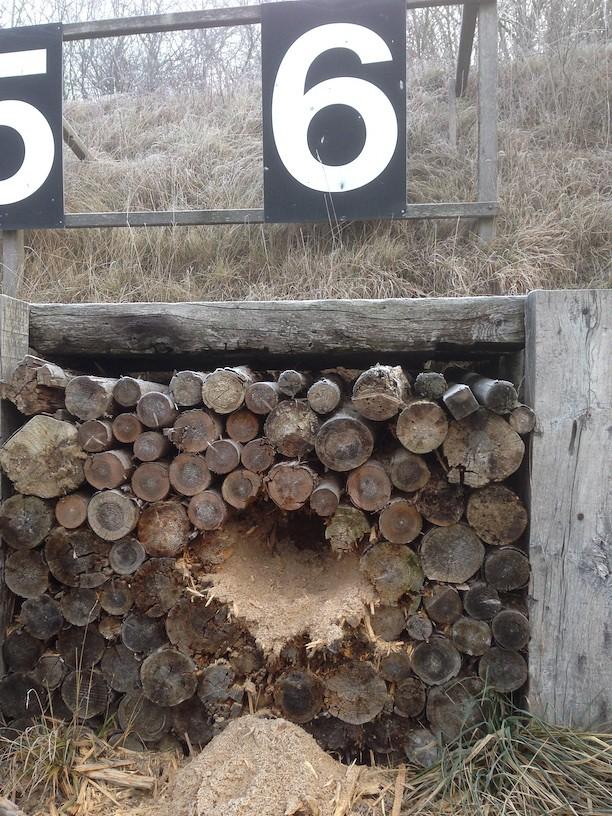 Kugelfangsanierung 2016