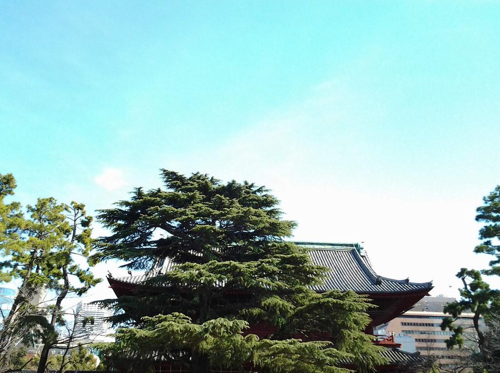 東京マラソン2017応援_増上寺