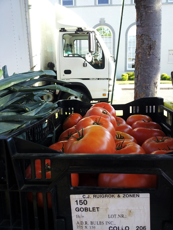 farmersmarket-nadja3