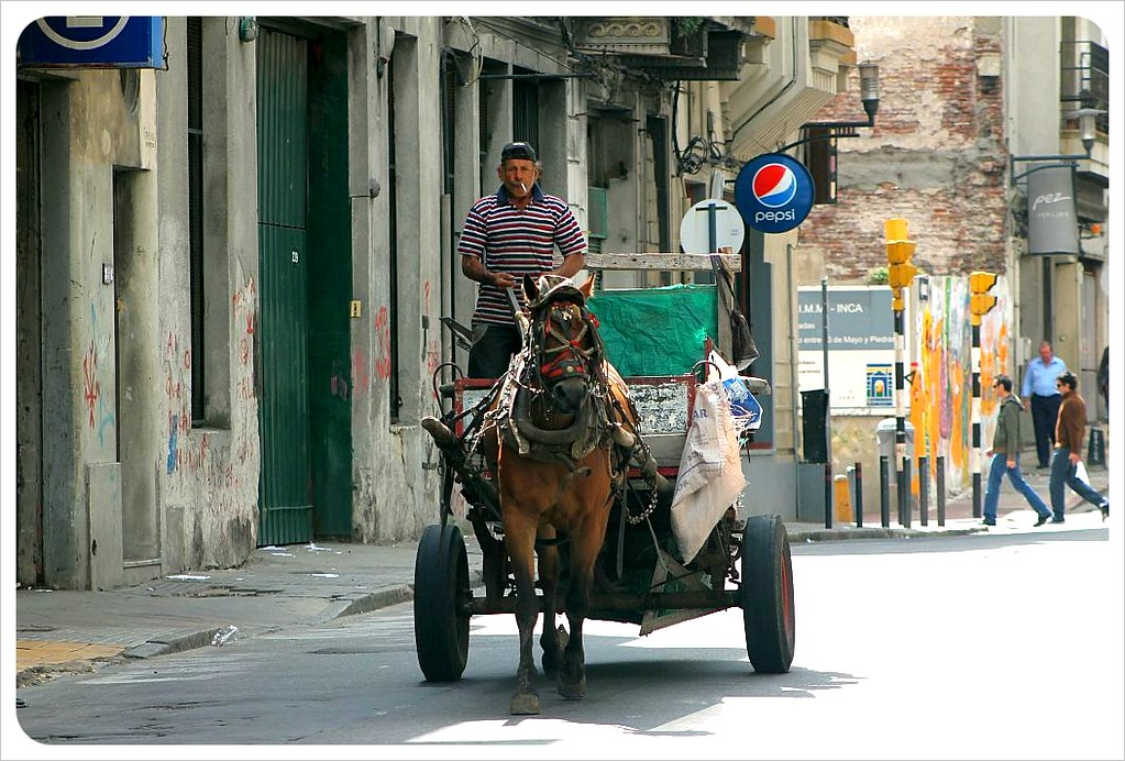 montevideo horse carriage
