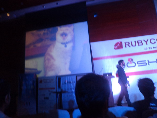 Arron Patterson (@tenderlove) at RubyConfIndia 2013 with his cat slide!