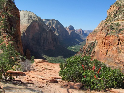 View from Angel's Landing, about 1/4 of the way up, Zion National Park, Utah