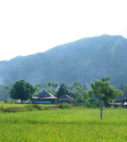 Sulawesi13-Pare Pare-Palopo (55)