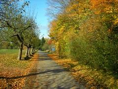 Neuhof im Herbst