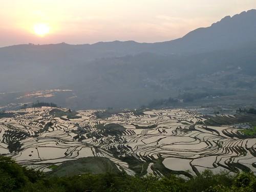 Yunnan13-Yuanyang 1-Duoyishu (48)