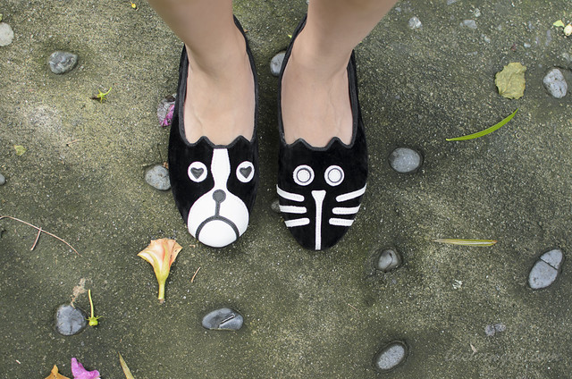 dog-cat-shoes