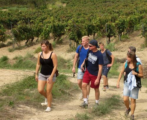 På väg mot vingården