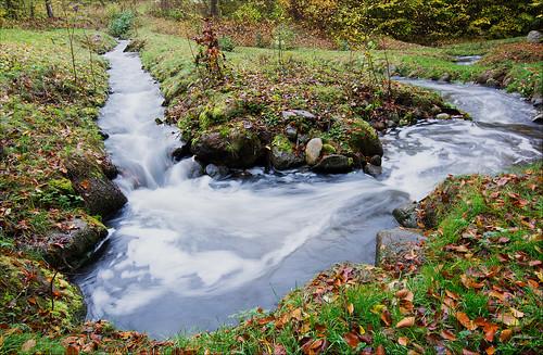 autumn nature leaves sunshine rain forest river denmark nikon stream aarhus goldenleaves vilhelmsborg tokina1116mmf28atx nikond7100