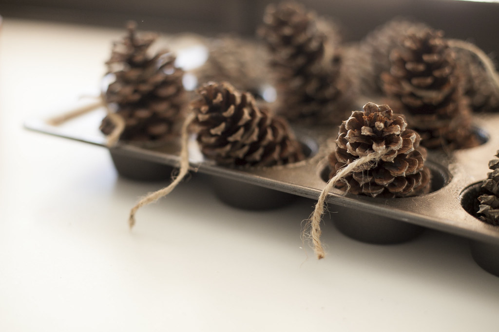FMB Pinecone Fire starters