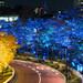 Illuminated Roppongi by Ballet Lausanne