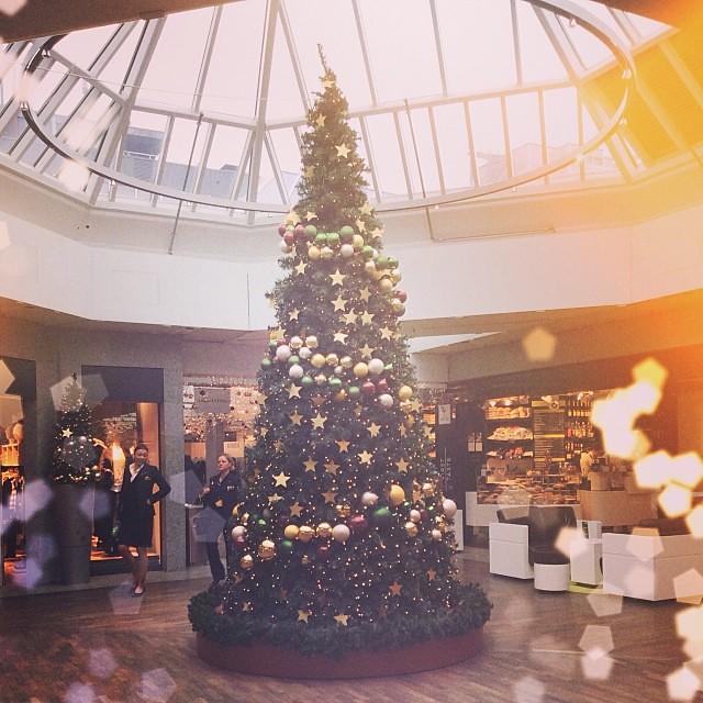 Елочки так легко инстаграмить! #xmas #christmas #tree #december #lights #green #airport #frankfurt