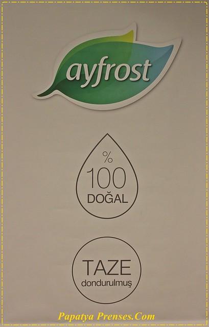 ayfrost 005
