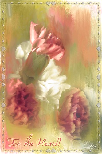 Image of red carnations with Photoshop Fill Scripted Patterns Border