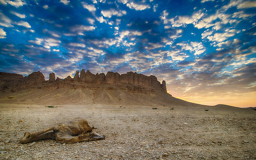 mountain sunrise death nikon angle wide tokina camel saudi arabia 沙特阿拉伯 قصورآلمقبل d800e 利雅得省
