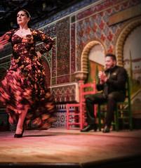 Flamenco Dance - In Motion