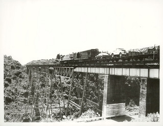 Goods Train crossing the Makatote Viaduct