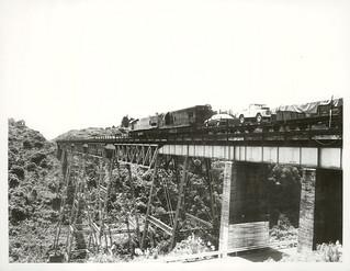 Goods Train crossing the Makatote Viaduct