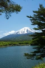 精進湖より富士山
