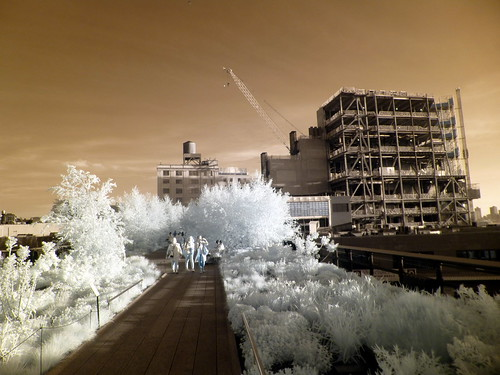 Whitney Museum High Line May 20, 2013 Infrared
