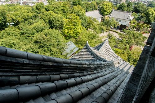 castle 日本 aichi inuyama d800 愛知県 犬山城 国宝 犬山市 国宝犬山城 inuyamacastel