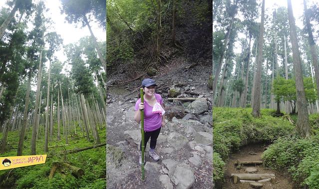 Hiking Mt. Nabewari - day trip from Tokyo 7