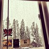 Morning coffee and a snow storm. Life is good. #weather #snow #bigsky #lifeisgood