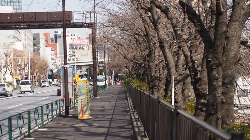 Tokyo Honeymoon 2013_day10_091