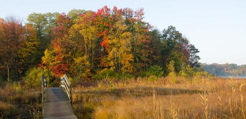 morning autumn fallleaves fall sunrise fallcolor autumncolors potawatomitrail
