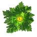 Atomic Celery by Yakir Pollak