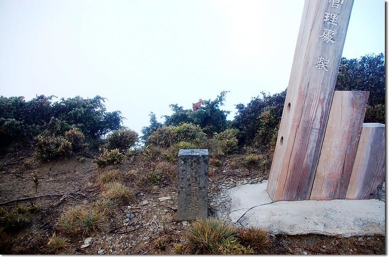 馬利加南東峰森林三角點(Elev. 3377 m)