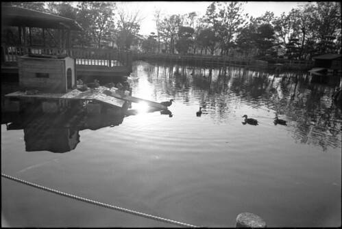 20131122 Leica3fMinoltaG-rokkor28 400TMY D76 StandDev 005