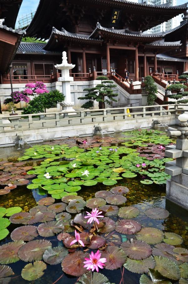 Lotus Pond & Chi Lin Nunnery
