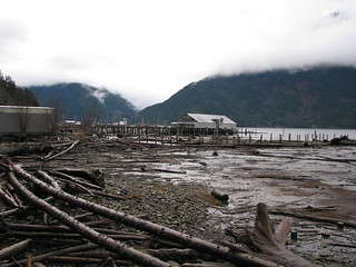 Bella Coola Estuary - 2