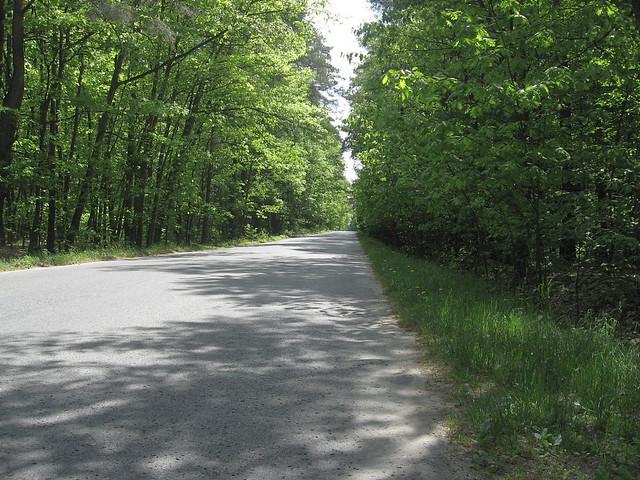 droga z Pabianic do Sereczyna